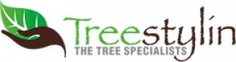 Treestylin Pty Ltd Tree Surgery Burleigh Heads Directory listings — The Free Tree Surgery Burleigh Heads Business Directory listings  Business logo