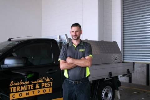 Brisbane Termite & Pest Control Pest Control East Brisbane Directory listings — The Free Pest Control East Brisbane Business Directory listings  1